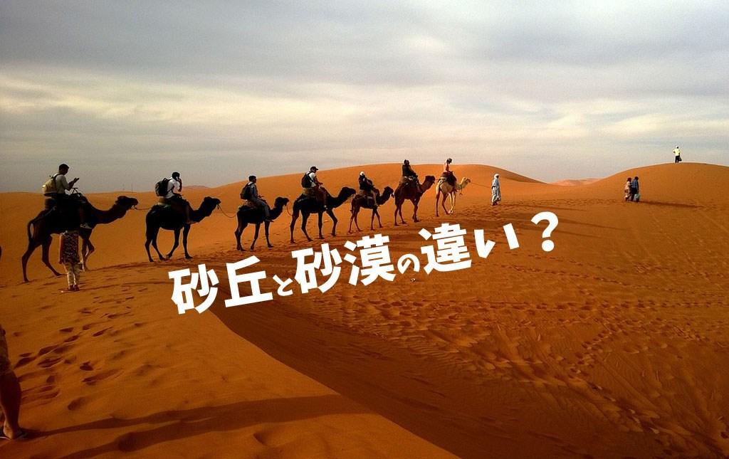 【砂丘と砂漠の違い】砂丘と言えば鳥取砂丘とレンソイス!英語でdune!実は日本唯一の砂漠は東京にあるんよ?