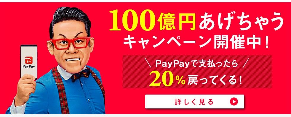 paypayキャンペーンページ